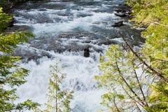 Предпосылка реки Стоковые Изображения
