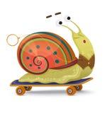 быстрая улитка Милая улитка шаржа на изолированном скейтборде иллюстрация штока