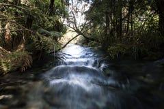 Быстрое пропуская река в Waikato, Новой Зеландии стоковая фотография