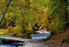 быстрое река горы на предпосылке деревянных дома и деревьев в солнце утра, концепции живой природы, крупного плана Стоковые Изображения