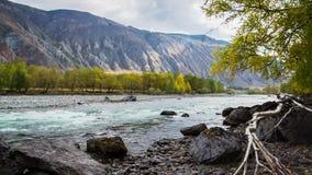 быстрое река горы сток-видео