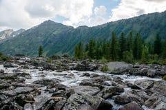 быстрое река горы Стоковые Фотографии RF