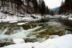 Быстрое река зимы стоковые изображения rf