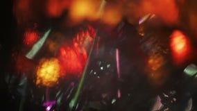 Быстроподвижные пестротканые светлые утечки Проблескивая гирлянда лежа на деревянной поверхности Абстрактная творческая предпосыл видеоматериал