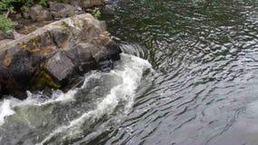 Быстроподвижное река в северо-западных территориях видеоматериал