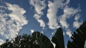 Быстроподвижные облака и голубое небо сток-видео