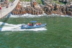 Быстроходный катер входя в ущелье реки штормов Стоковые Фото