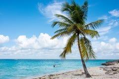 Быстро пройдите шлюпки в ясном океане на предпосылке пальм и красивых облаков Стоковые Фото