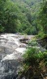 быстрый водопад стоковое изображение