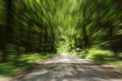 быстрый идти Стоковые Фото