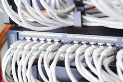 Быстрый переключатель сети в datacenter Стоковая Фотография RF