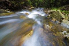 Быстрый пропускать через дикое зеленое реку леса с кристально ясной ровной шелковистой водой падая от больших влажных камней в кр стоковое фото