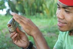 быть фермером рыбы Стоковая Фотография