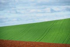 быть фермером Стоковое фото RF