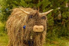 Бычковые соломы - фланк смолы Диаграмма бычковых от соломы haymaking стоковая фотография