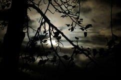 Было темной и бурной ночой Стоковые Фотографии RF