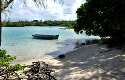 Бюстгальтеры de mer Belcourt, Маврикий Стоковая Фотография RF
