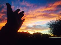 Благословения хваления естественные Стоковое фото RF