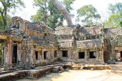 Благоустраивайте взгляд висков на Angkor Wat, Siem Reap, Камбодже Стоковая Фотография RF