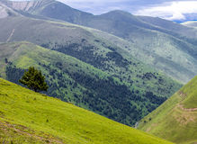 Благоустраивайте взгляд сверху зеленой горы на Тибете, Китае Стоковые Изображения RF