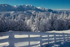 Благоустраивайте зиму в горах загородке и ели снежных Стоковая Фотография RF
