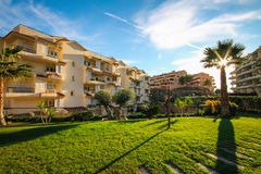 Благоустраивайте дизайн зоны с пальмами и живущей загородкой по отоношению к дому под теплым солнцем осени и голубыми небесами в  Стоковое Изображение RF