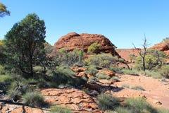 Благоустраивайте на королях Каньоне в северных территориях Австралии стоковая фотография