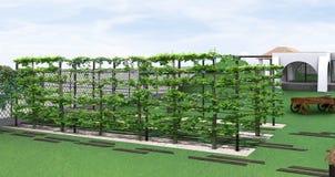 Благоустраивающ сад стиля страны, 3D представляют Стоковые Фото