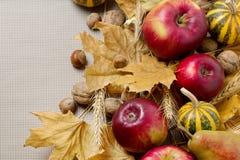 Благодарение праздника осени Натюрморт с тыквой и яблоками, Стоковое фото RF