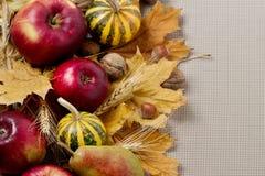 Благодарение праздника осени Натюрморт с тыквой и яблоками, Стоковое Изображение RF