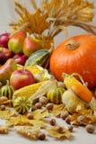 Благодарение праздника осени Натюрморт с тыквой и яблоками, Стоковая Фотография