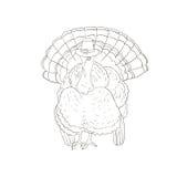 Благодарение шляпы Турции Стоковое фото RF