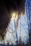 Блески солнца через ветоши Стоковые Изображения