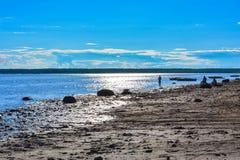 Блеск реки Поверхность реки Стоковое Фото