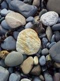 Бледный камень на пляже Стоковое фото RF