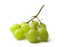 близкая виноградина группы вверх по белизне Стоковая Фотография