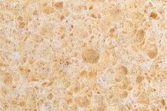 Близкий взгляд губки целлюлозы Стоковое Изображение