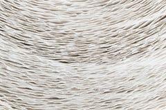 Близкий взгляд крена бумажных полотенец Стоковое фото RF