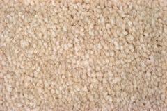 Близкий взгляд настилки ковров tan плюша стоковое фото