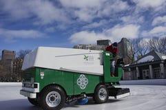 Водитель Zamboni очищая лед 4 Стоковое Изображение