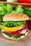 близкий гамбургер вверх Стоковое фото RF