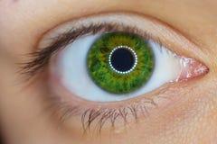 близкий глаз вверх по женщине Стоковая Фотография RF