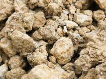 близкий песчаник вверх Стоковое Изображение RF