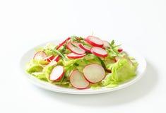 близкий салат снятый вверх по овощу Стоковые Фотографии RF