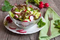 близкий салат снятый вверх по овощу Стоковые Изображения RF