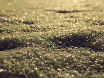 близкий снежок вверх Стоковые Изображения