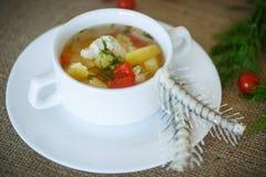 близкий суп съемки рыб вверх Стоковое Фото