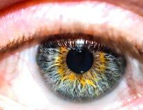 близкий человек глаза вверх стоковое изображение