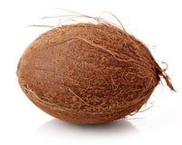 Близкое кокоса вверх изолированное на белизне Стоковое Изображение RF