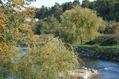 Близко разделенное река, Хорватия Jadro Стоковые Изображения RF